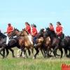 A tavalyi lovastúra (Foto Dobai)